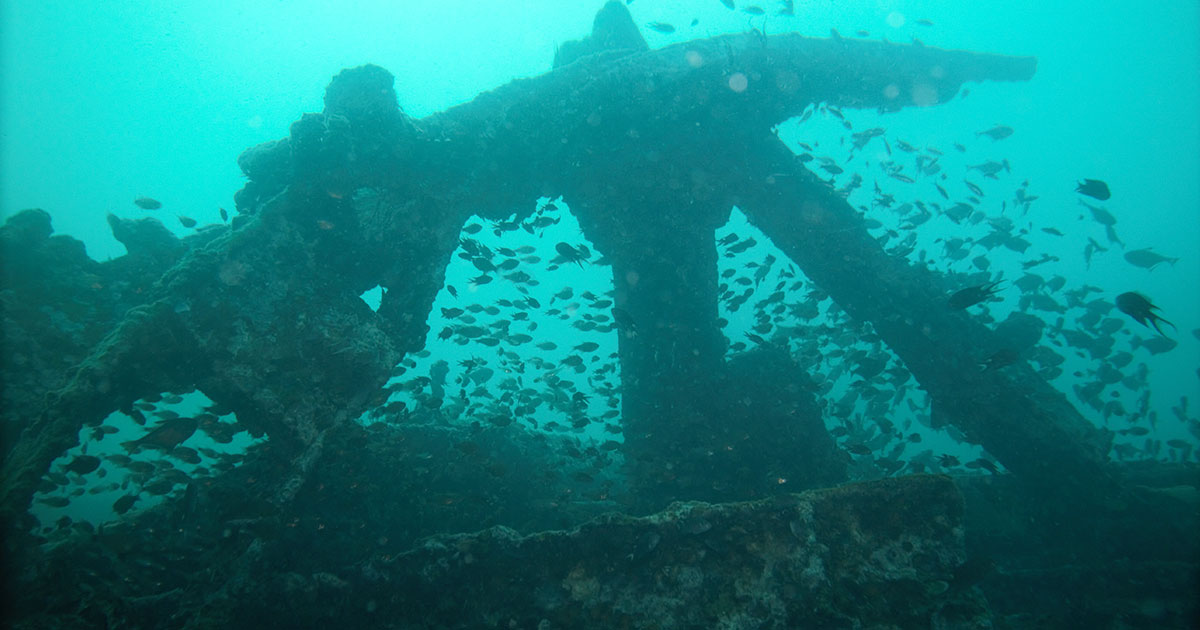 Boonsung Wreck diving