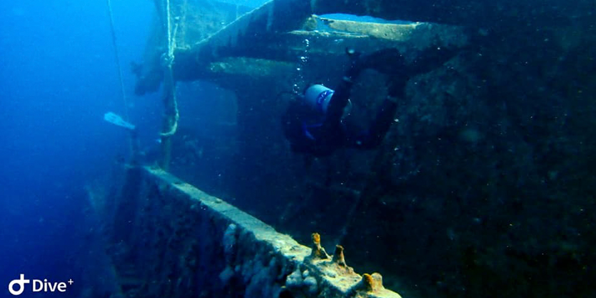 Diver At Salem Express Egypt