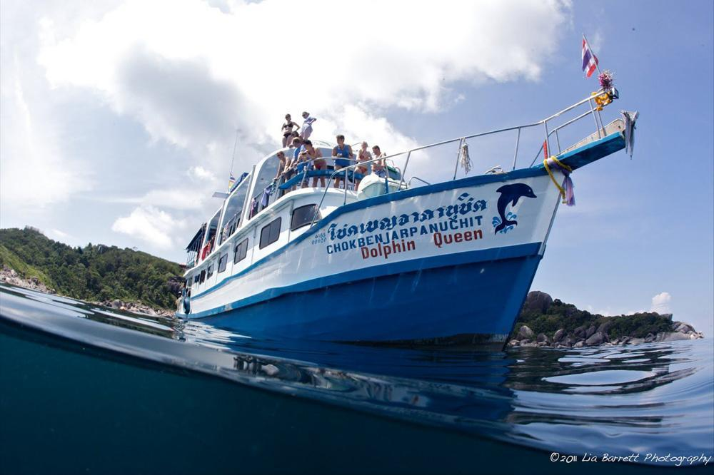 Dolphin Queen  Affordable Liveaboard Diving Myanmar
