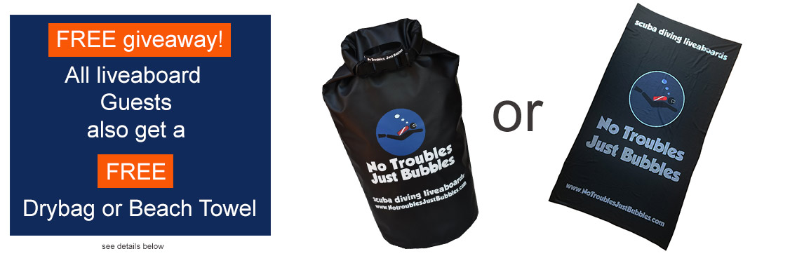 get a free no troubles just bubbles drybag or beach towel