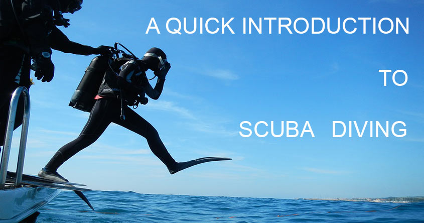 quick introduction to scuba diving