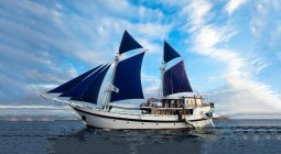 Boat on special Komodo Dancer