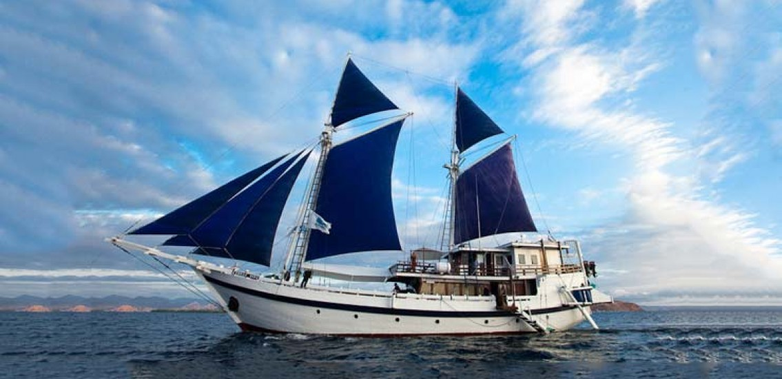 Komodo Dancer Liveaboard Indonesia